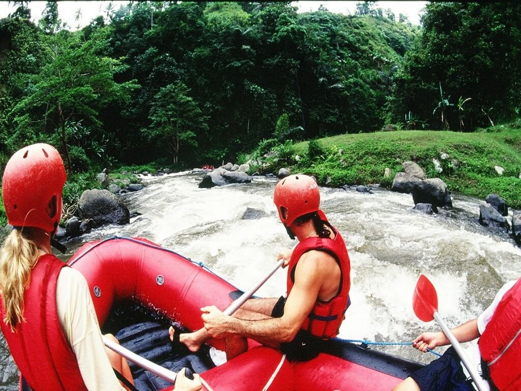 White Water Rafting + Another experience