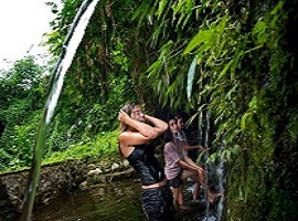 Tropical Trekking & Elephant Safari Ride - Bali Ideas